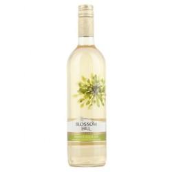 Blossom Hill Pinot Grigio 75cl 1